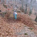 Bulldozer alpino.... in azione